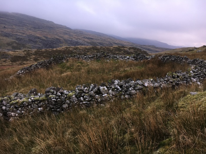 Hut circle near to Bryn Cader Faner site